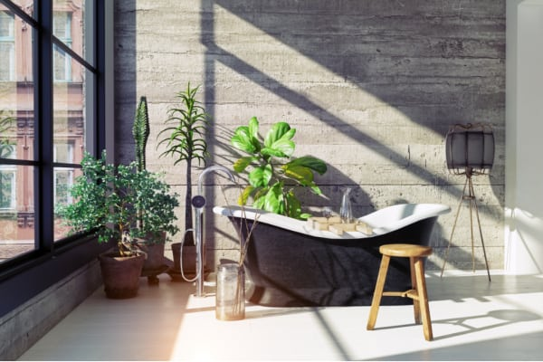 Is it good to have plants in the bathroom?