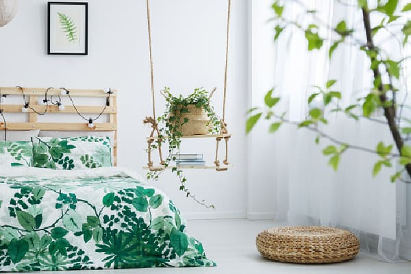 best bedroom plant