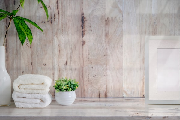 What is the best plant for the bathroom?