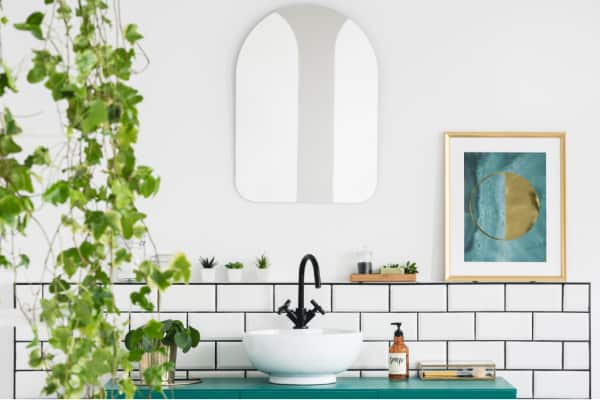 What are the benefits of having plants in the bathroom?