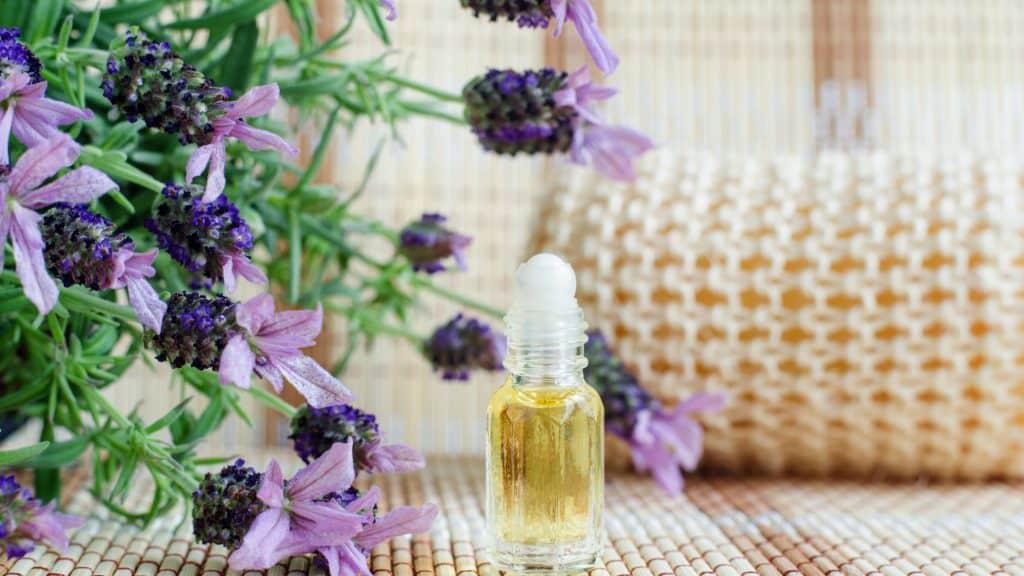 Lavender: Best Deeper Sleep Inducer Bedroom Plants