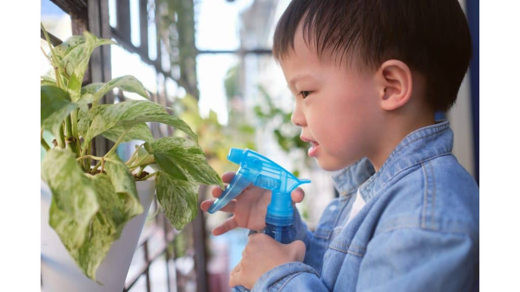 a child misting a plant to help increase their humidity level
