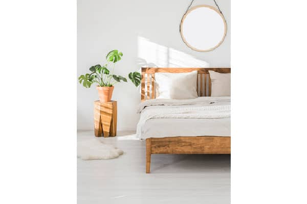 a monstera plant placed in a bedroom receiving indirect lighting